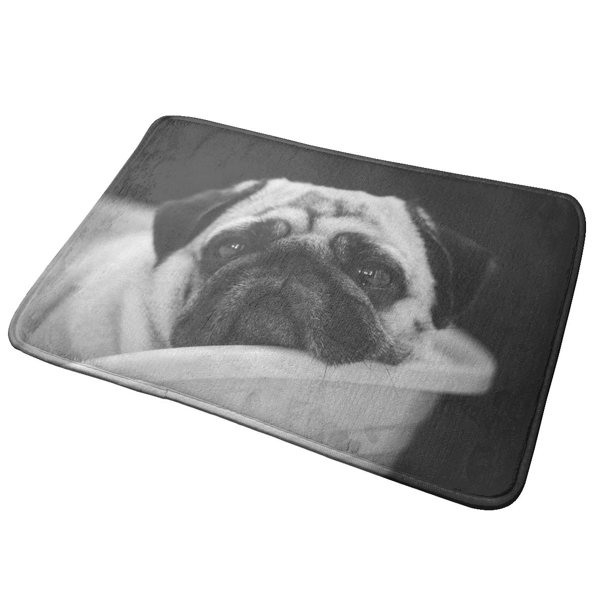 40x60cm Doormat Dog Animals Pug Door Mat Area Rug